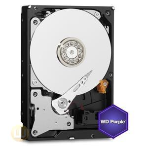Western Digital Purple 1TB Surveillance Hard Drive,3.5
